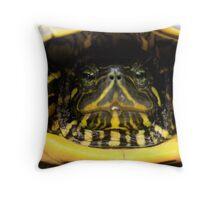 not a ninja turtle Throw Pillow