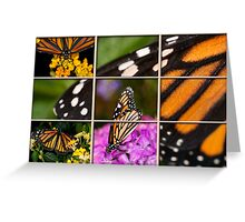 Monarch Montage Greeting Card