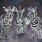 zebra painting print by derekmccrea