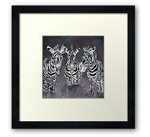 zebra painting print Framed Print