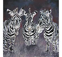 zebra painting print Photographic Print
