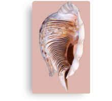A Word In Your Shell-Like..... Canvas Print