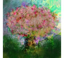A colorful tree Photographic Print