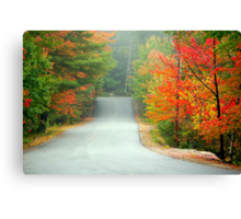 Road to Zephyr Lake Canvas Print