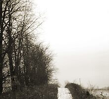 Rockbridge Trail by jamrine