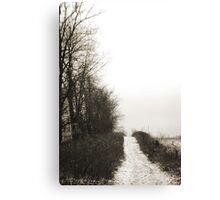 Rockbridge Trail Canvas Print