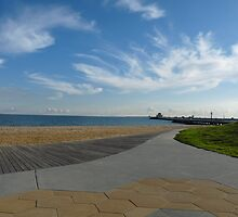 St Kilda Beach by solena432