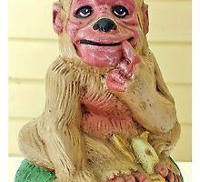 Monkey Monkey by Scott Mitchell