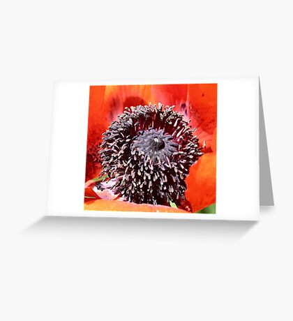 Opiated Centering Greeting Card