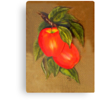 Ivey's Apple Canvas Print