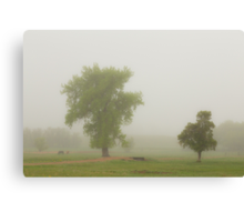 Foggy Country Springtime Morning Canvas Print