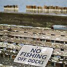 No Fishing Off Docks by Peri
