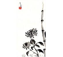 Chrysanthemum & Bamboo Photographic Print