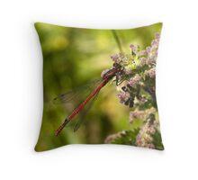 Large Red Damselfly (Pyrrhosoma nymphula) Throw Pillow