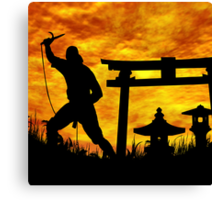 Ninja on the attack. Canvas Print