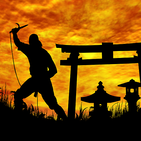 Ninja on the attack. by Okeesworld