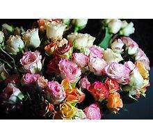 mini Tea Roses Bouquet Photographic Print