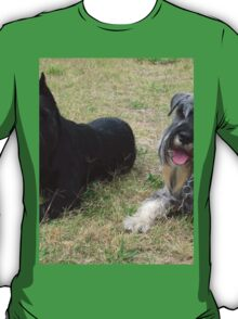 Awesome Schnauzer Giant T-Shirt