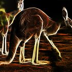 Red 'roo' by miroslava