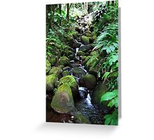 Moss Rock waterfall Greeting Card