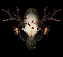 cat skull by morf