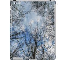 Web of Limbs II iPad Case/Skin