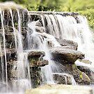 Water Fall by Leslie  Hagen