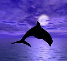 Dolphin Jump 1 by Okeesworld