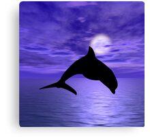 Dolphin Jump 1 Canvas Print