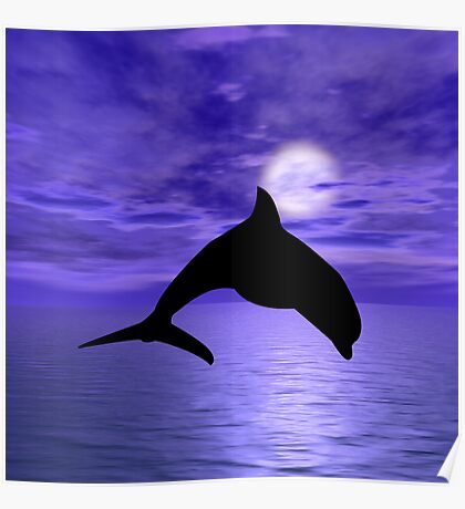 Dolphin Jump 1 Poster