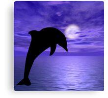 Dolphin Jump 2  Canvas Print