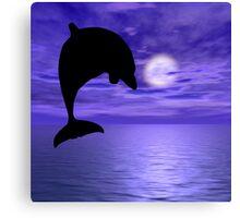 Dolphin Jump 3 Canvas Print
