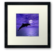 Dolphin Jump 5 Framed Print