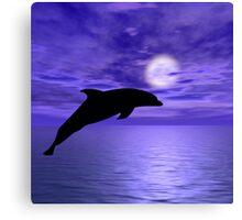 Dolphin Jump 5 Canvas Print