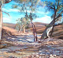 Creek Bed - Flinders Ranges by Lynda Robinson