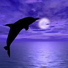 Dolphin Jump 6 by Okeesworld