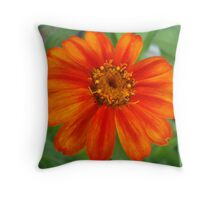 painted petals Throw Pillow