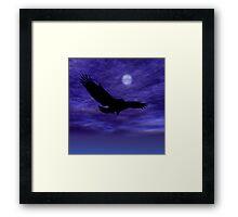 Eagle Gliding Framed Print
