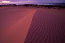 Pastel Dunes  by Travis Easton