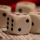 Roll of the Dice!  by Fiona Kersey