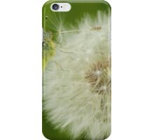 Early Butterfly iPhone Case/Skin