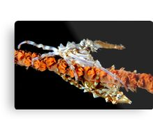 Xeno Crabs Metal Print