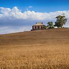 House on the hill by Jan Pudney