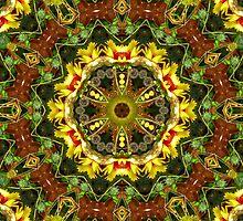 Flower-burst by Nadya Johnson
