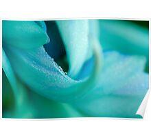 Jade Vine Flower Poster