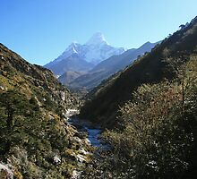 Up the Valley to Ama Dablam by Richard Heath