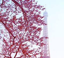 Vintage Tour Eiffel  by faithie