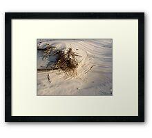 Wind, Sand, and Shadows (Dauphin Island, Alabama) Framed Print