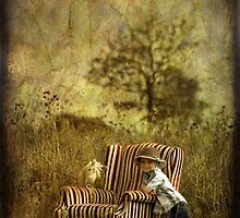 The Chair and a Boy by Naomi Frost