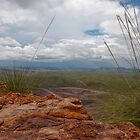 View from East Ridge - Argyle Diamond Mine by Simon Blears